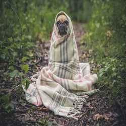 ठंड लगने से खुद को बचाएं