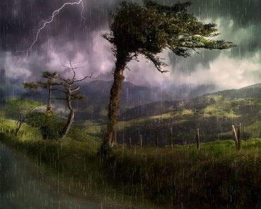 बारिश की जानकारी